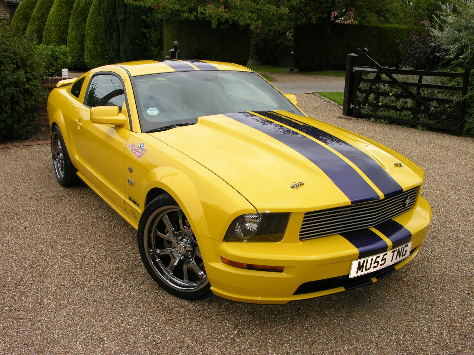 File:2005 Ford Mustang GT Supercharged  Flickr  The Car Spy 6.jpg