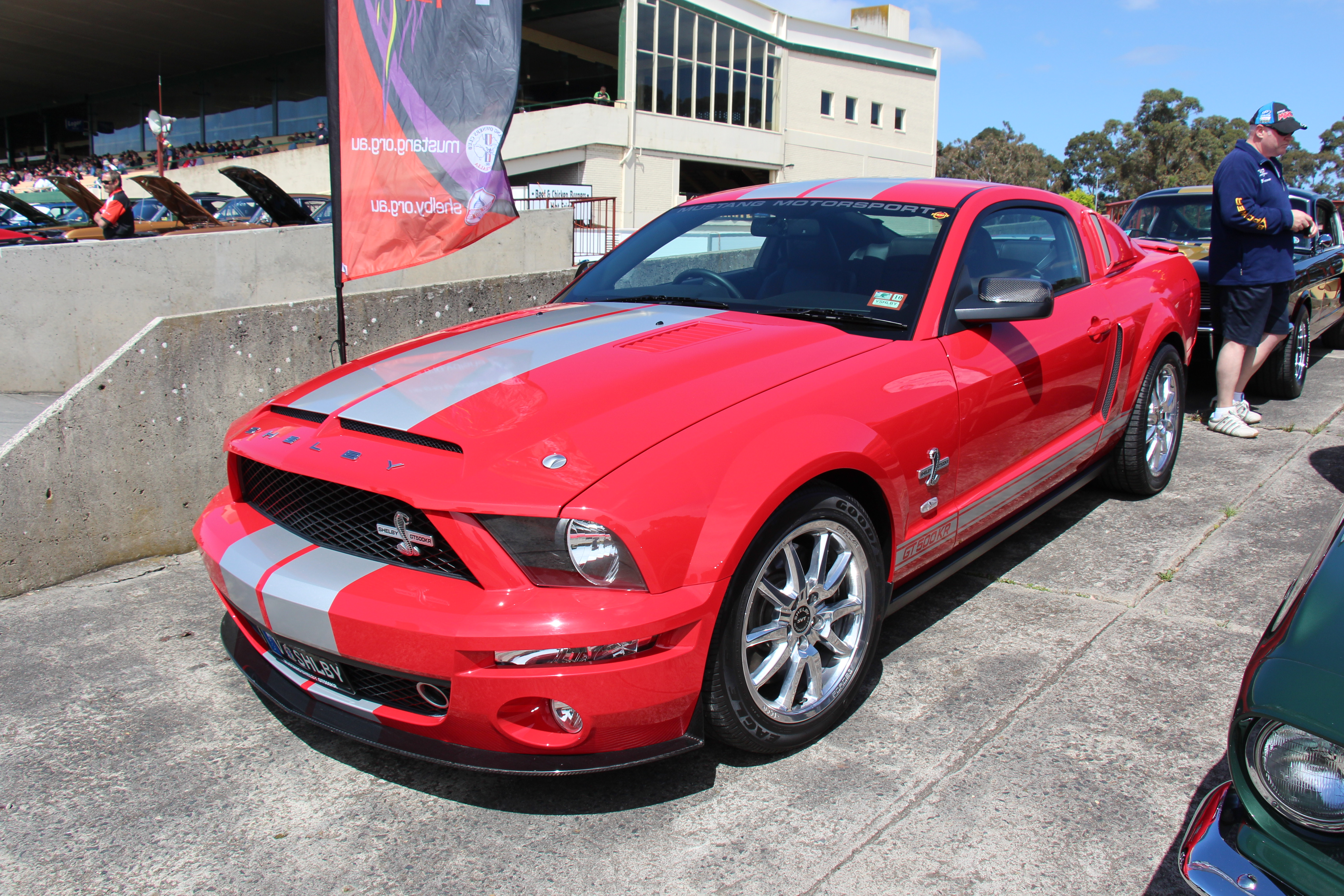 Shelby Mustang  Wikipedia