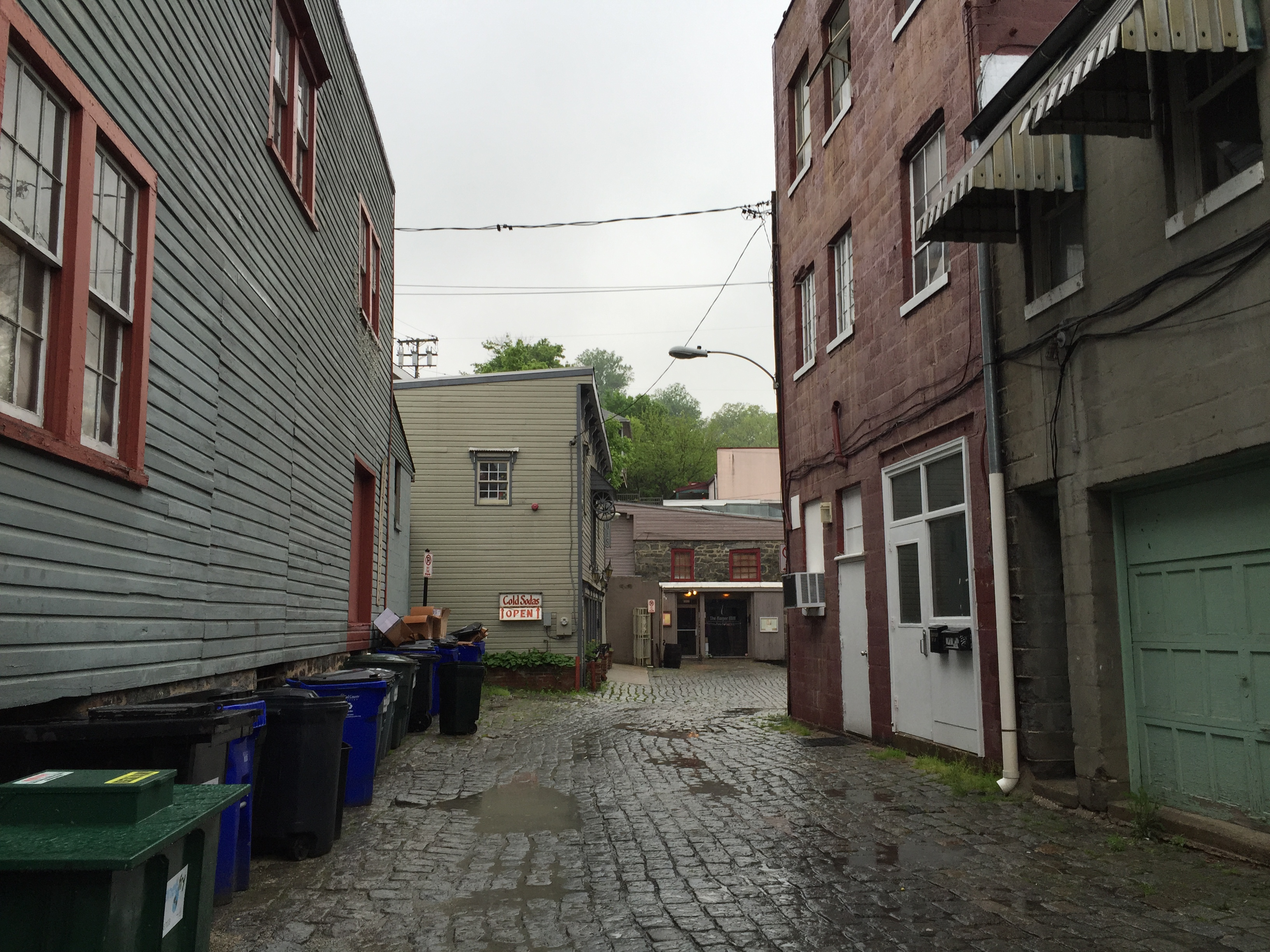 A gloomy look down an alley, one side lined with an assortment of plastic garbage cans and the other has a green garage door and a white doorway