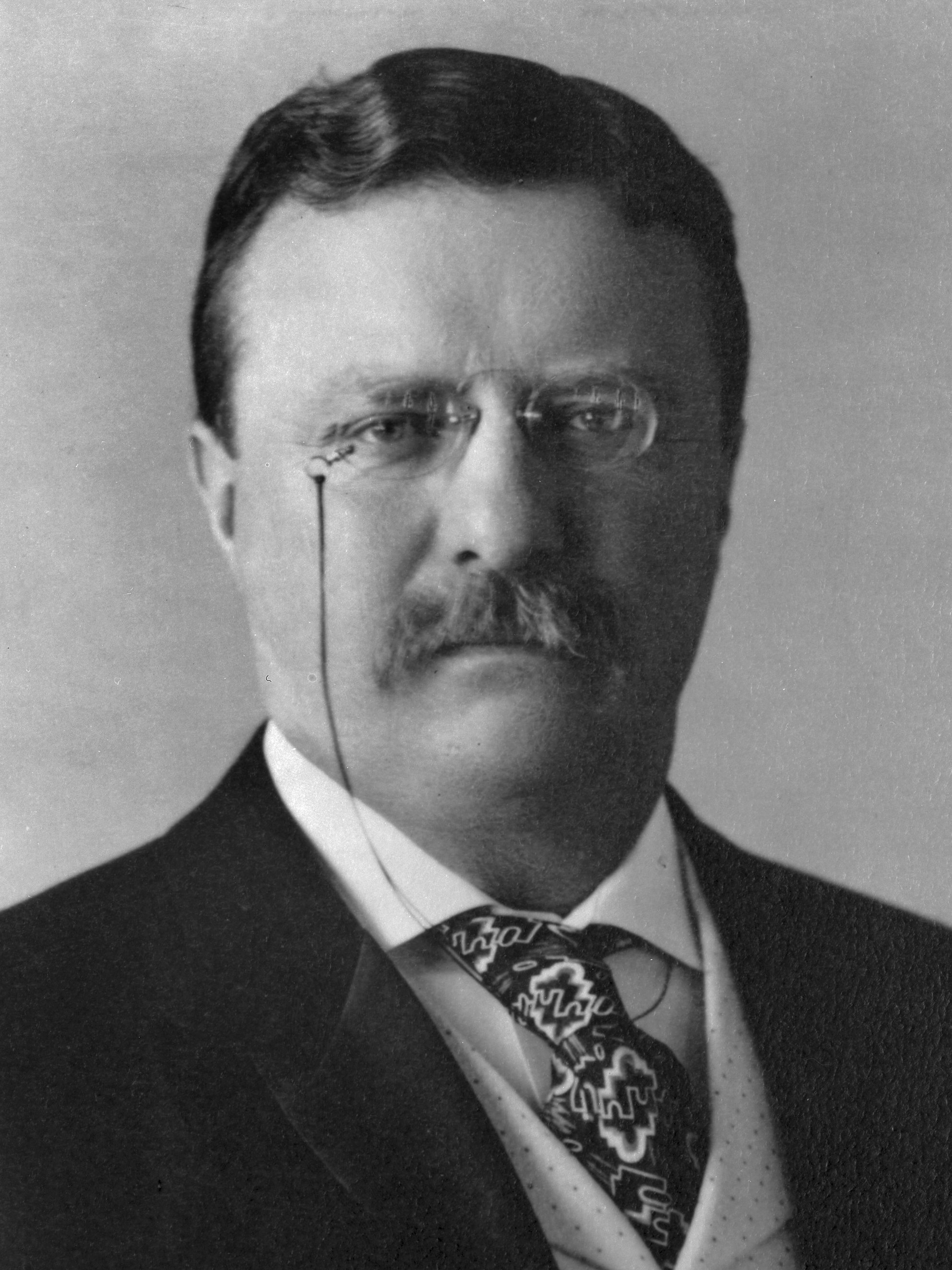 theodore roosevelt as one of the best presidents in the history of the united states