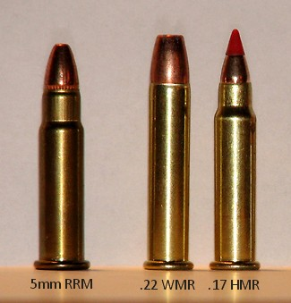 5mm_Remington_Rimfire_Magnum.jpg