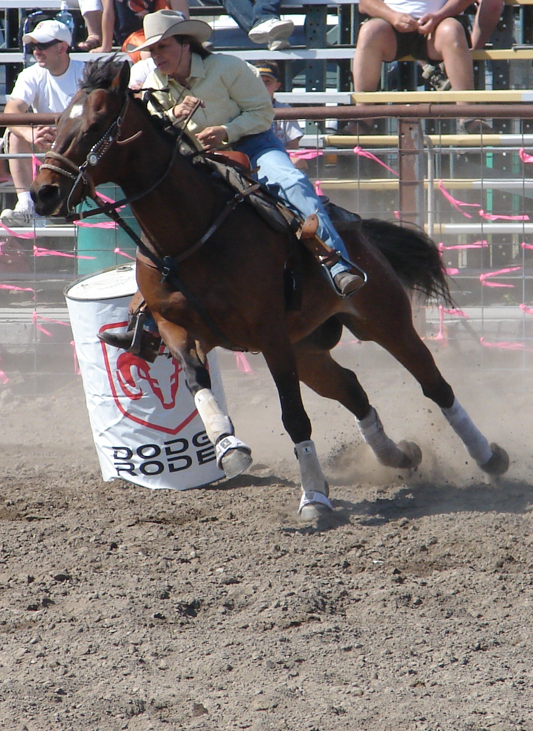 Black quarter horses barrel racing - photo#2