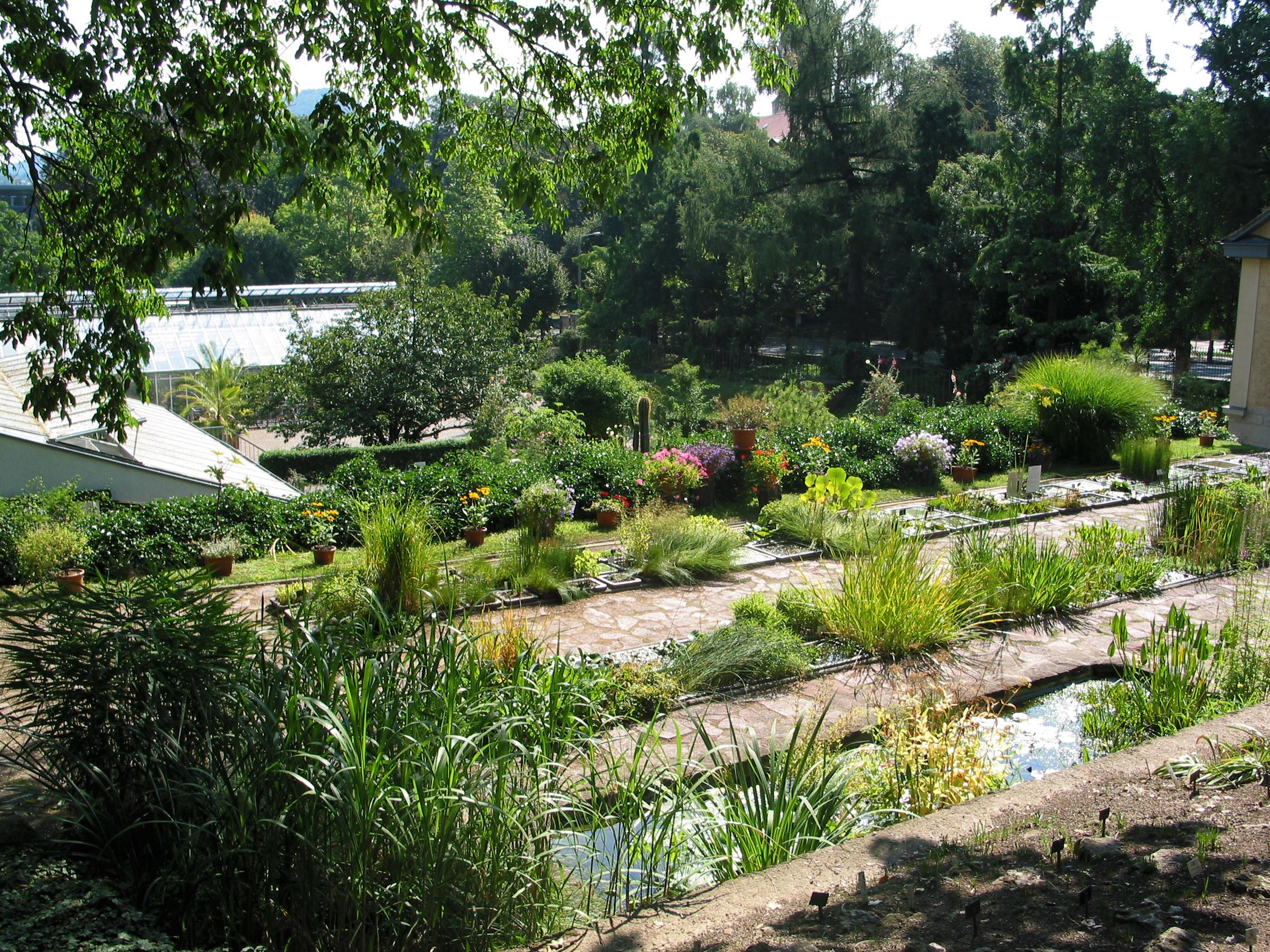 Filebotanischer Garten Jena Panoramiojpg Wikimedia Commons