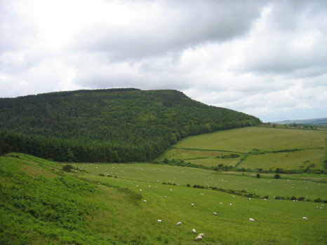 Chester Hope and the edge of the Simonside Forest - geograph.org.uk - 106961