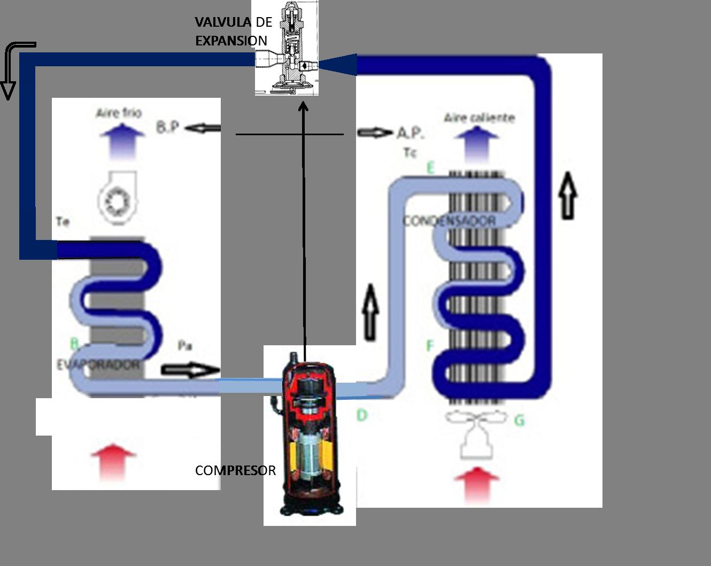 Circuito Frigorifico : File circuito frigorífico wikimedia commons