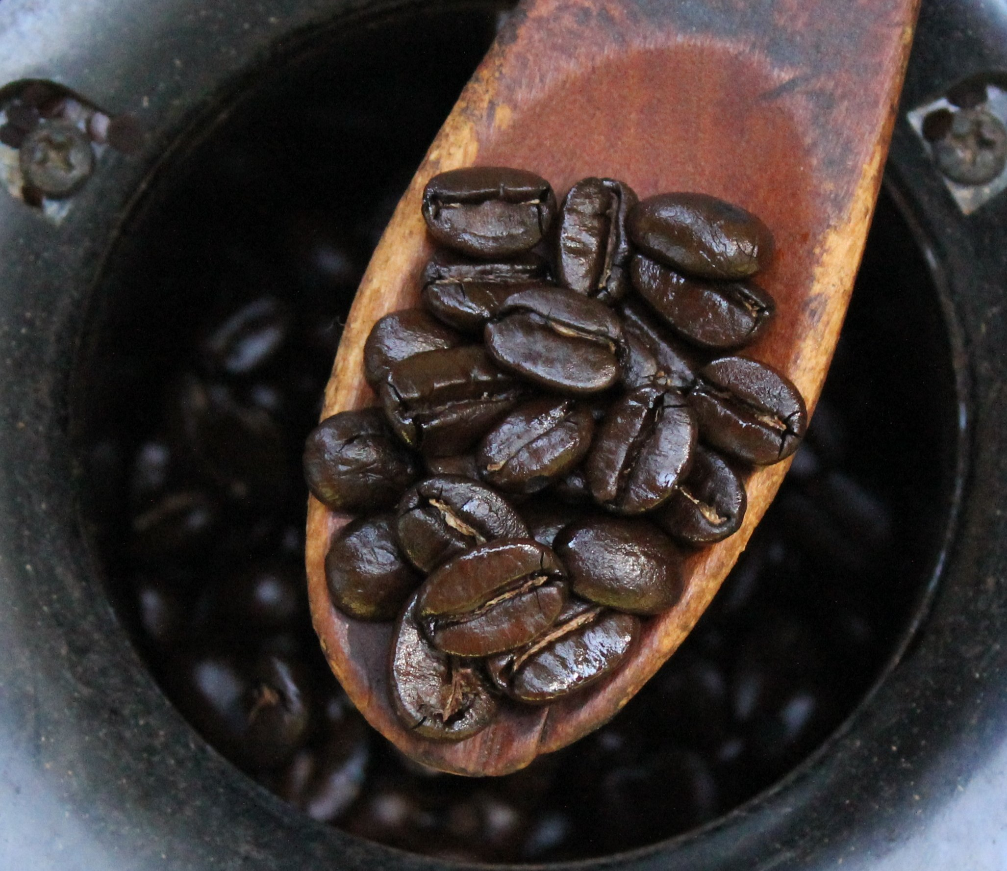 Filecoffee Roast Levels 7 The Home Roaster Color Chartg