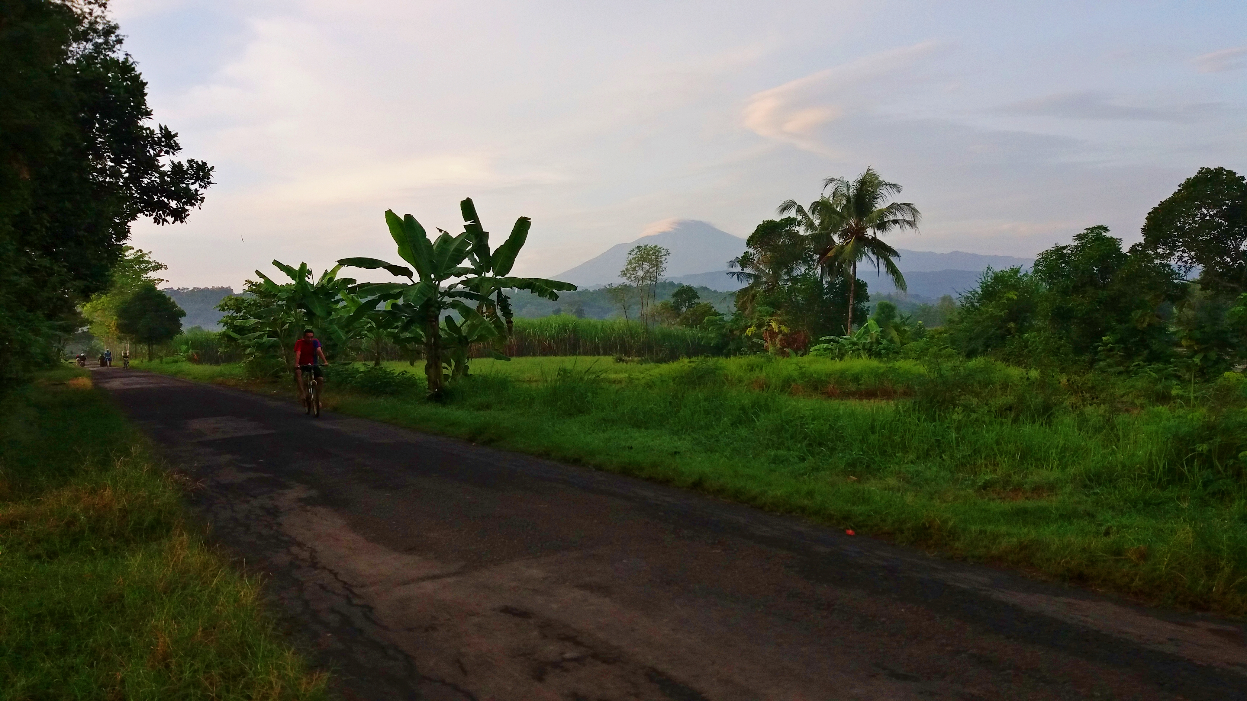 File:Jalan Raya Tonggara - Cacaban, Kedungbanteng, Kabupaten Tegal, Jawa Tengah, 20160515.jpg