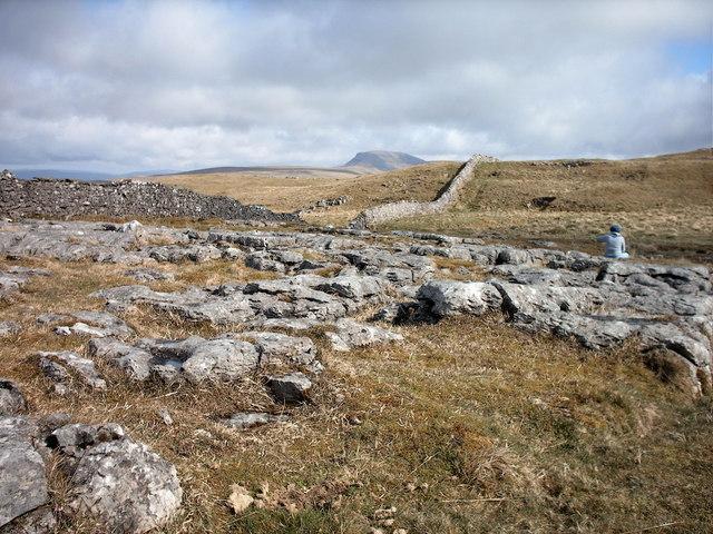 Limestone pavement-Winskill stones - geograph.org.uk - 1125697