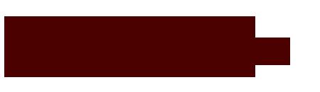 Logo The Librarians