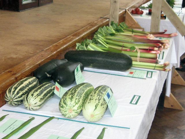 File:Marrows_and_Rhubarb_at_the_Long_Marston_and_Puttenham_Horticultural_Show,_2009_-_geograph.org.uk_-_1425898.jpg