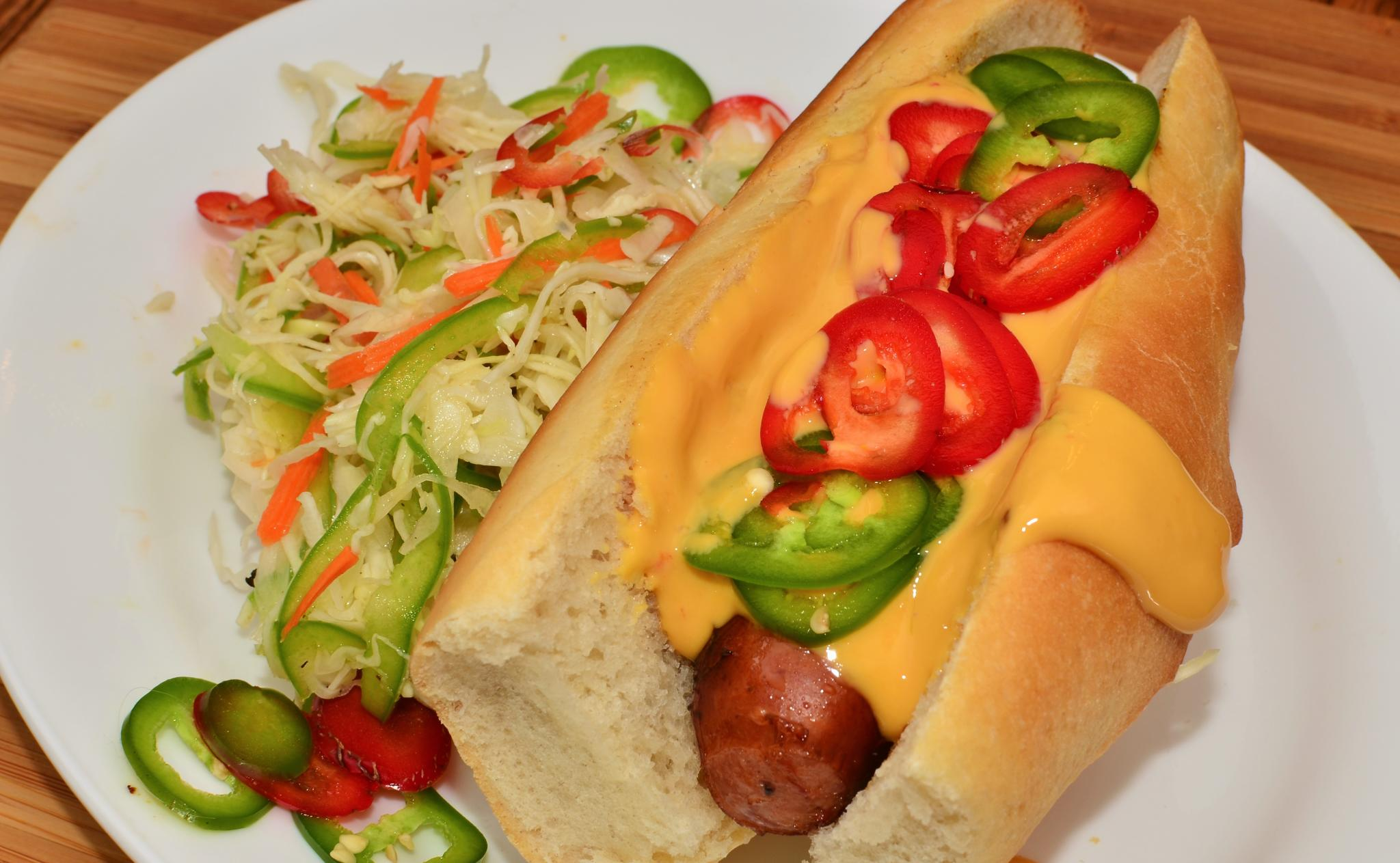 Image Result For Vegetarian Dogs