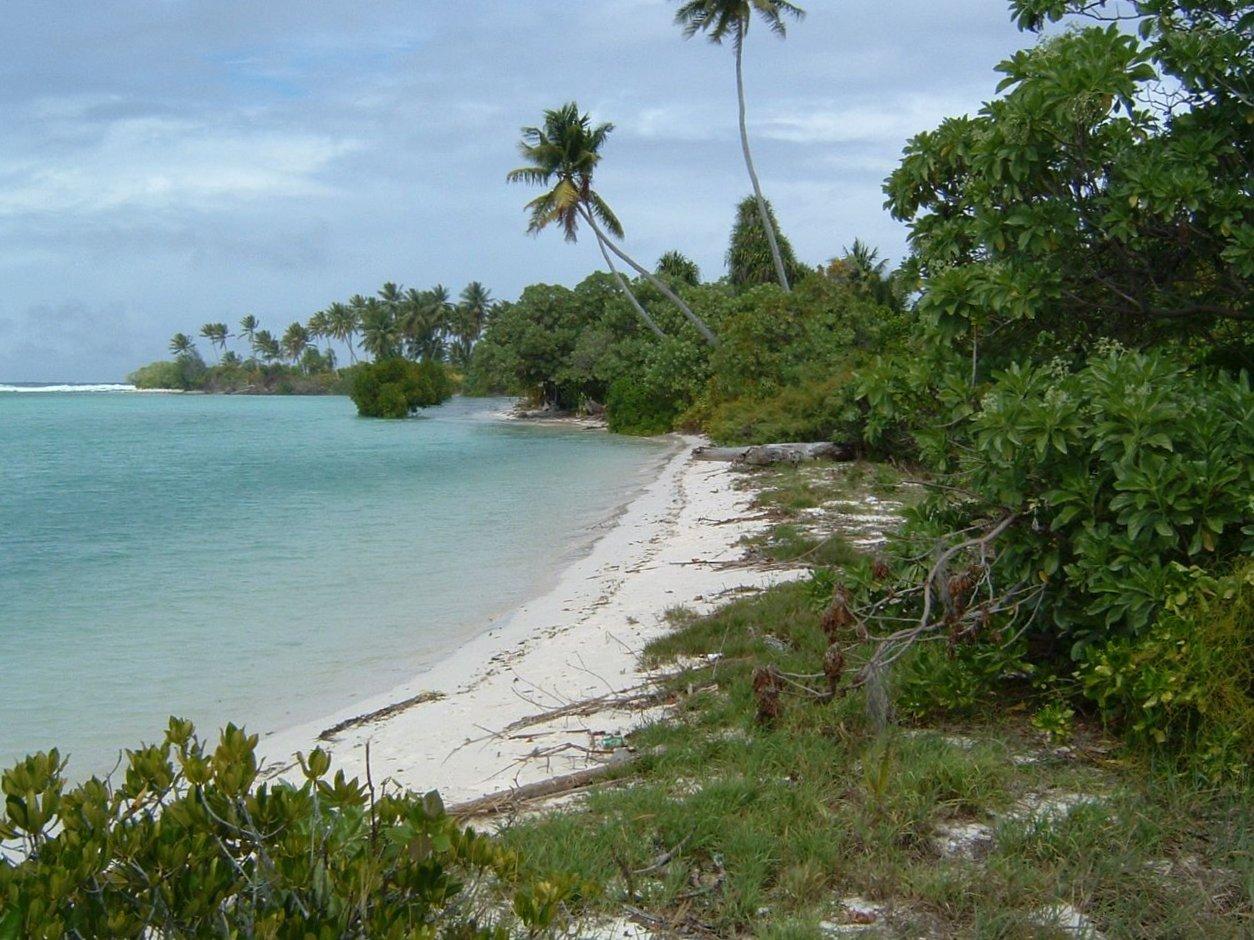 Nice beach (2569586165) (2).jpg