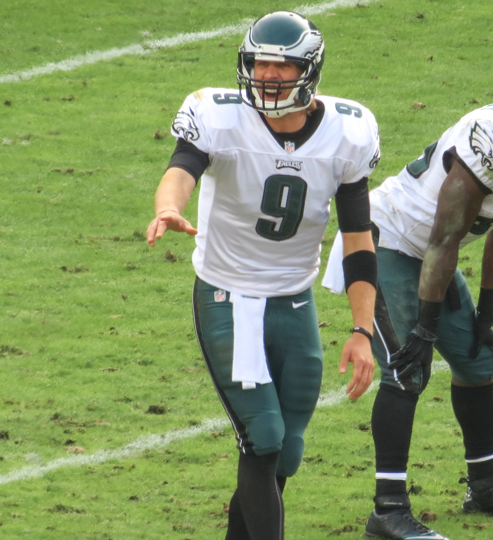 Image result for Nick Foles