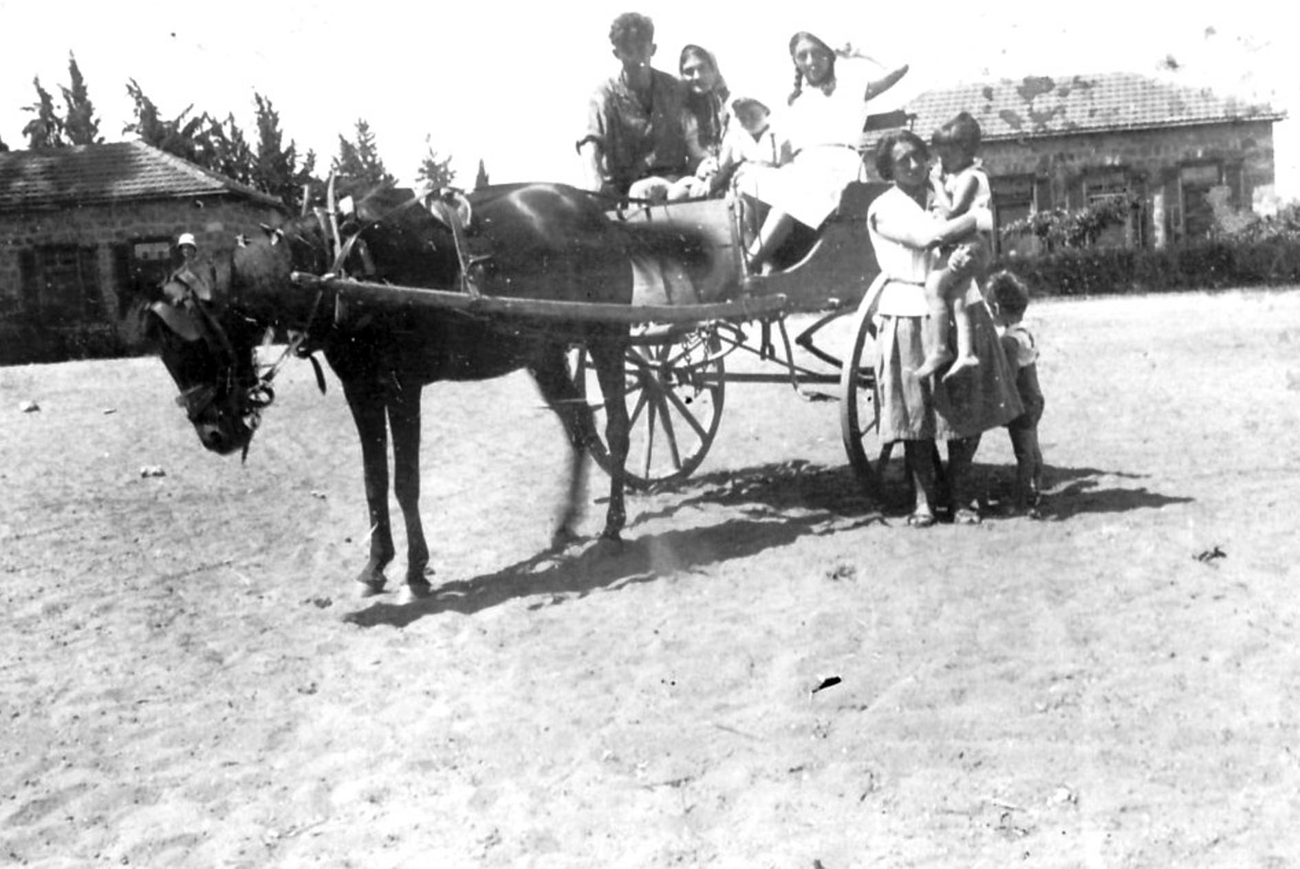 גן שמואל-חברים בכרכרה בחצר 1940