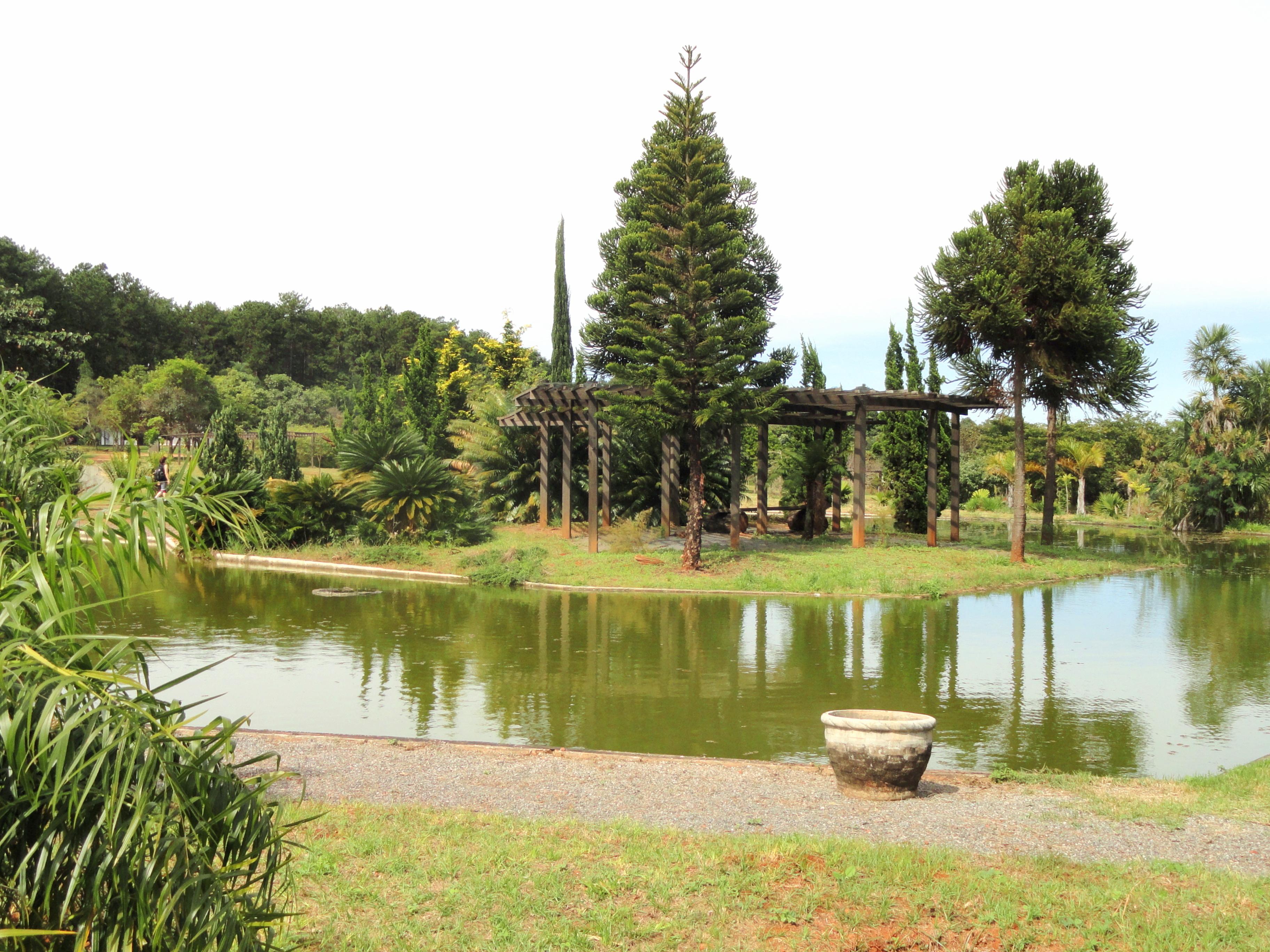 FilePond  Jardim Botânico de Brasília  DSC09727JPG  Wikimedia