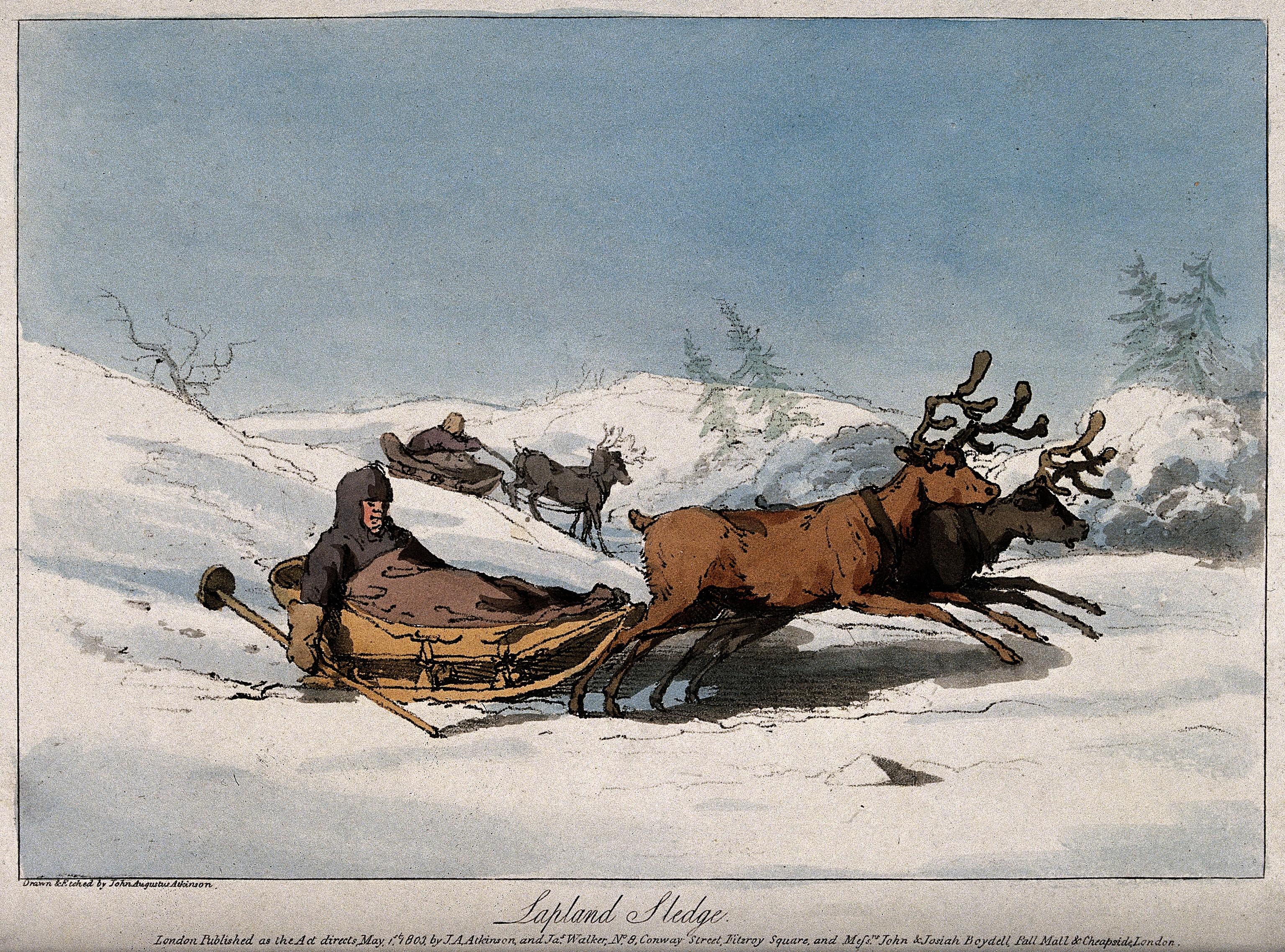 Bildresultat för snowy november reindeer