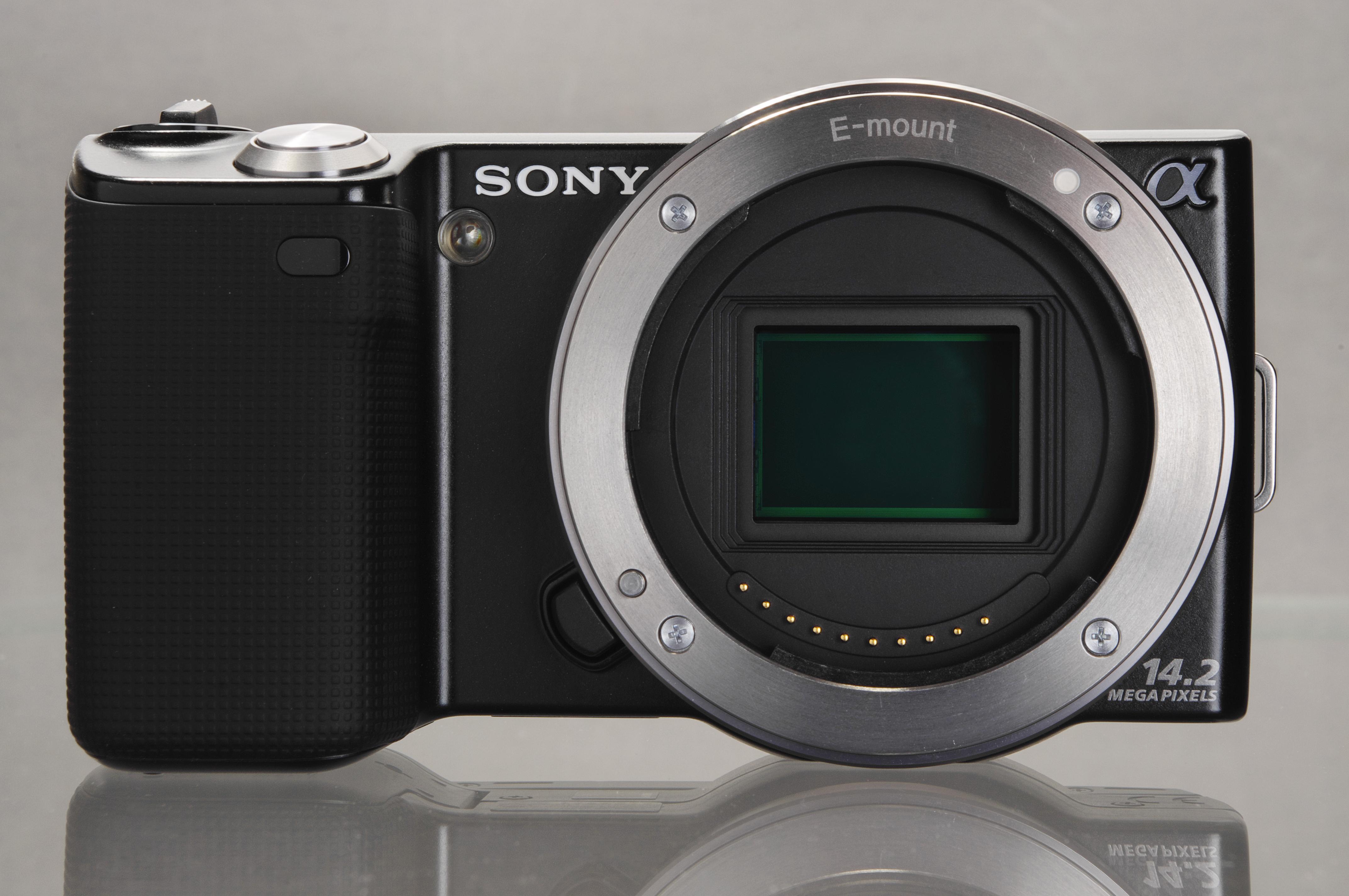 Sony_NEX_5_body_IMGP1368_smial_wp.JPG