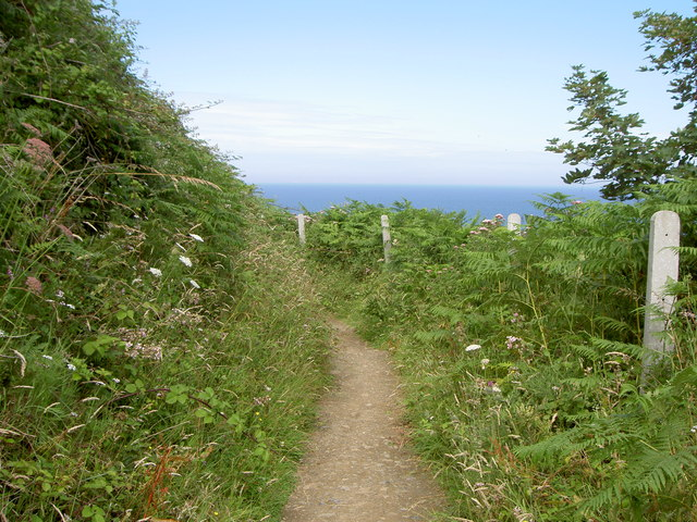 The Bray-Greystones Cliff Path - geograph.org.uk - 917307