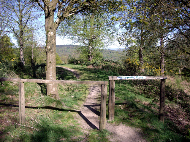 The Greensand Way at Holmbury Hill - geograph.org.uk - 1279498