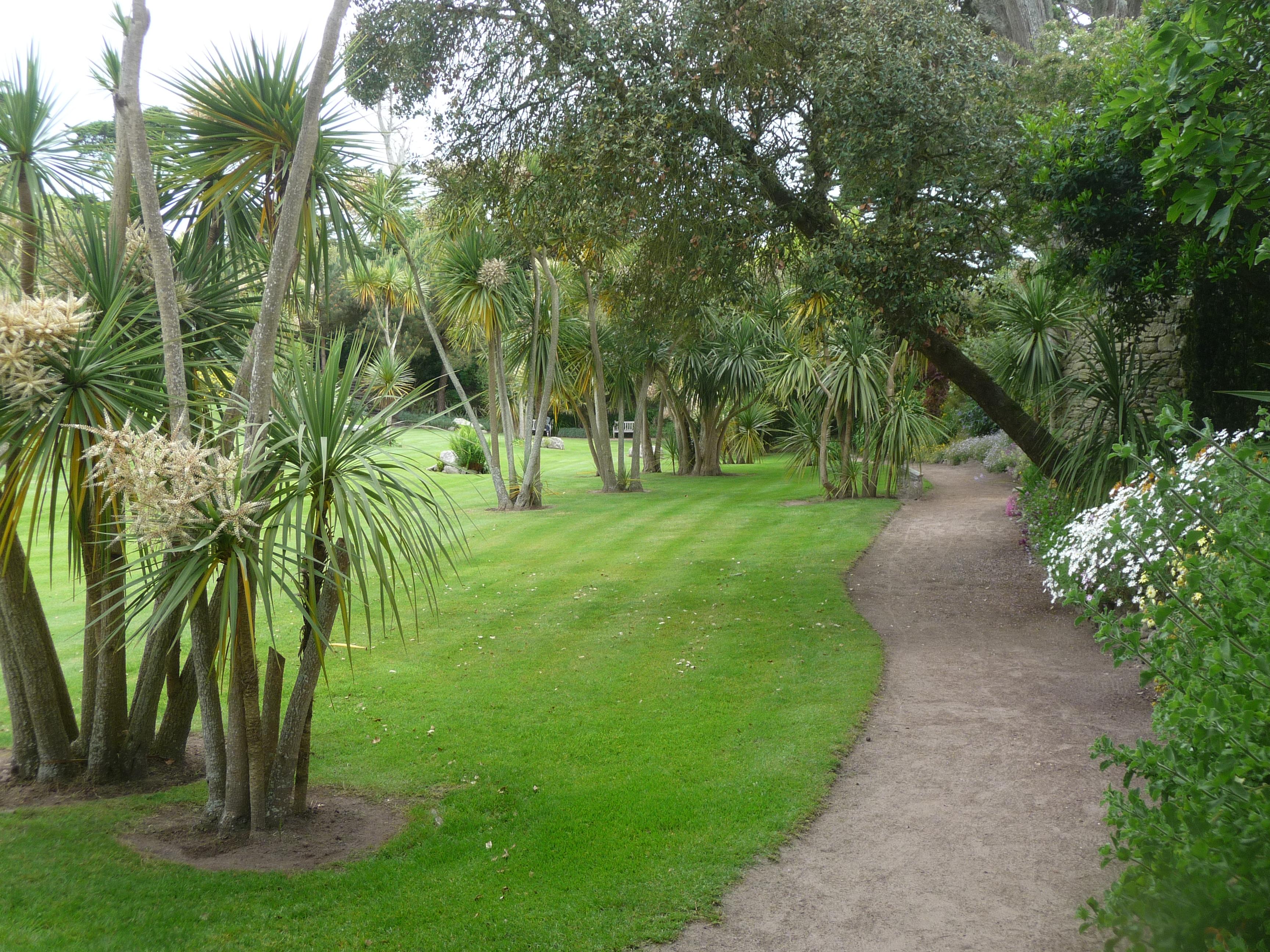 File le de batz 029 jardin georges delaselle cordylines for Jardin georges delaselle