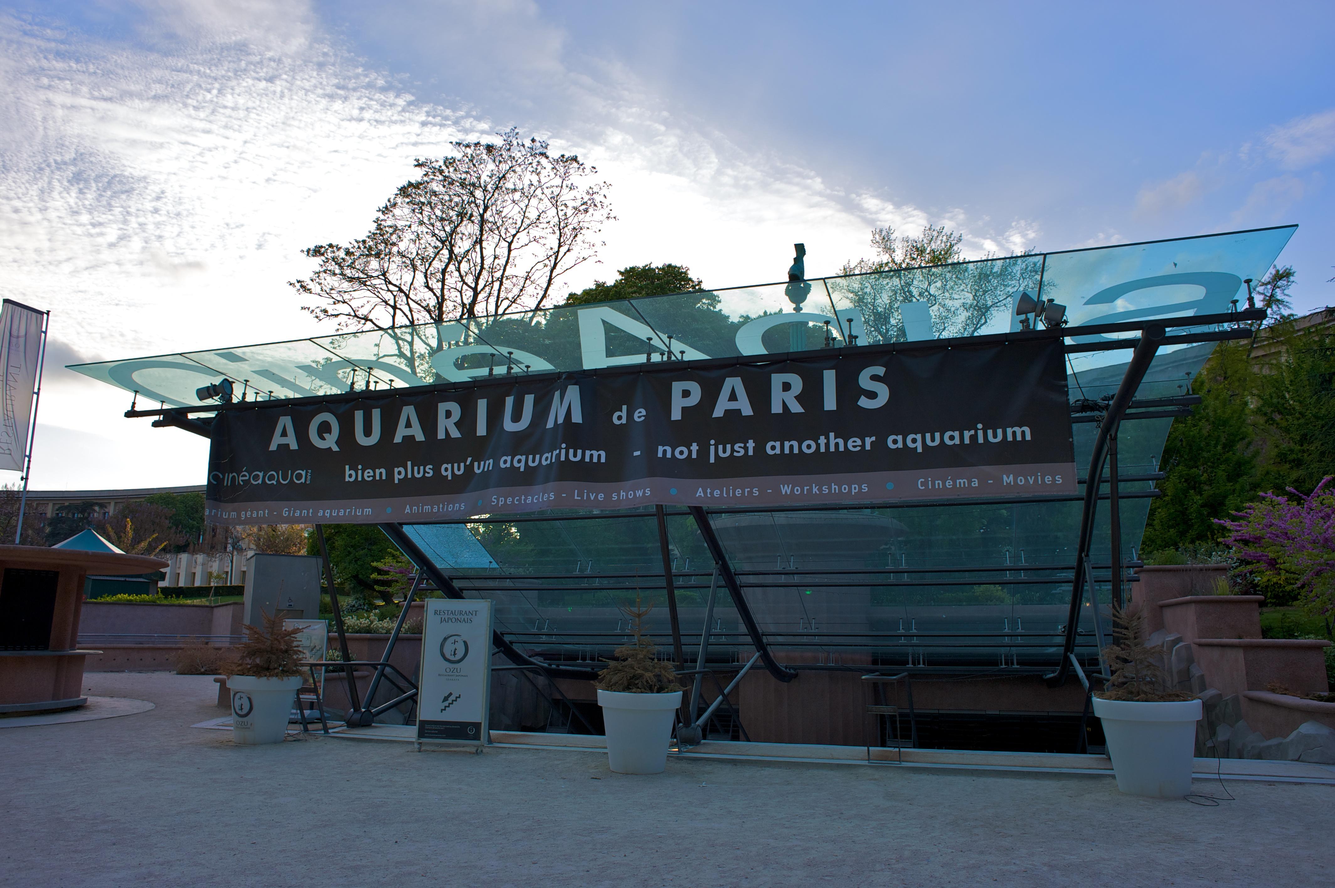File aquarium de paris paris wikimedia commons for Aquarium de paris jardin du trocadero