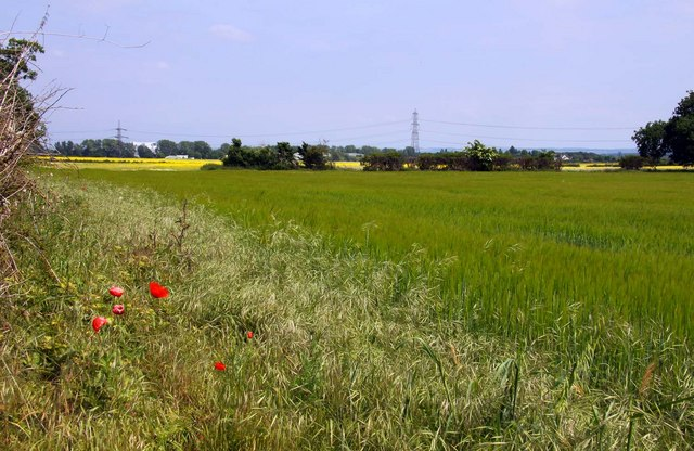 Arable field off Thame Lane - geograph.org.uk - 1336765