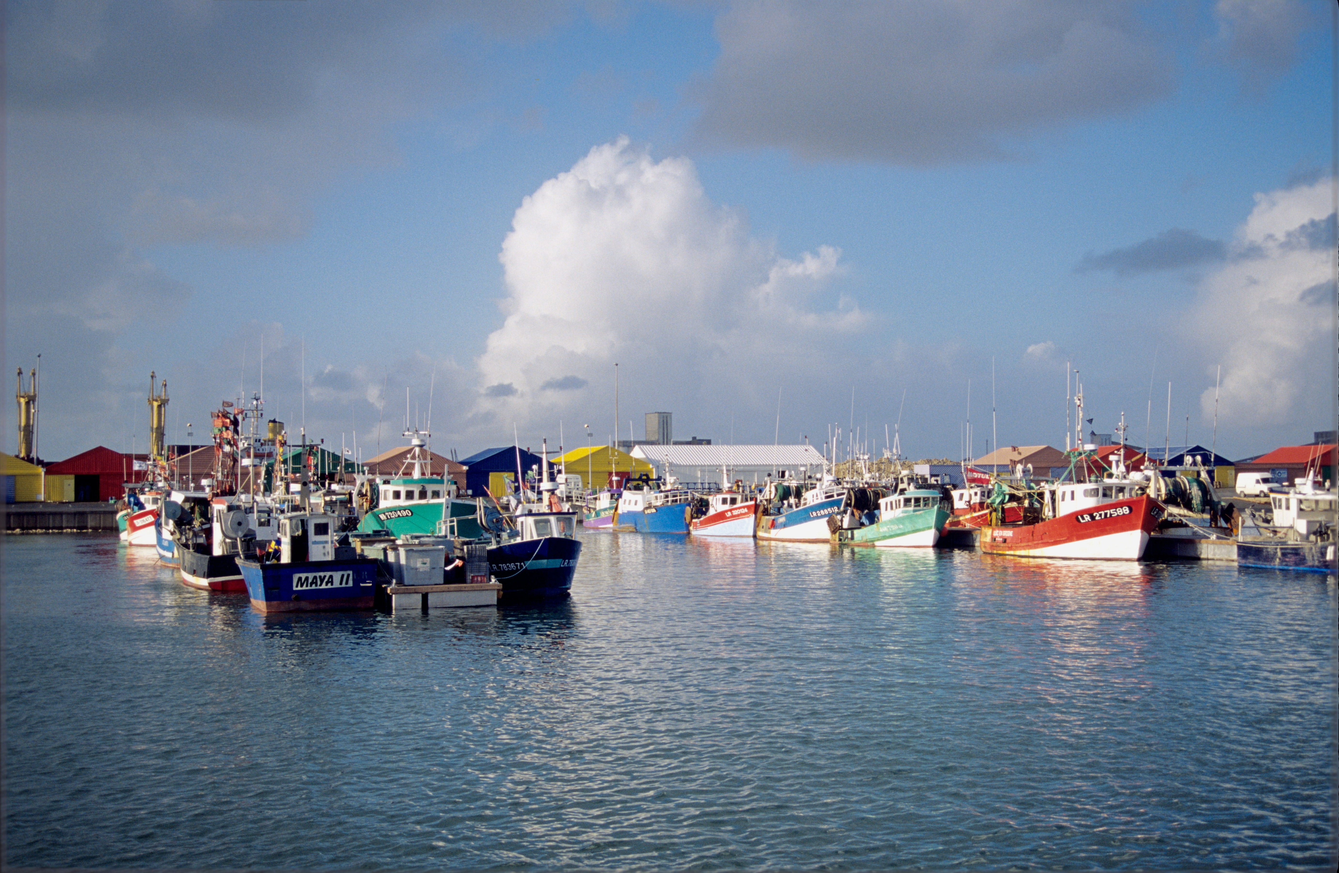 Comment pecher au port - Comment pecher dans un port ...