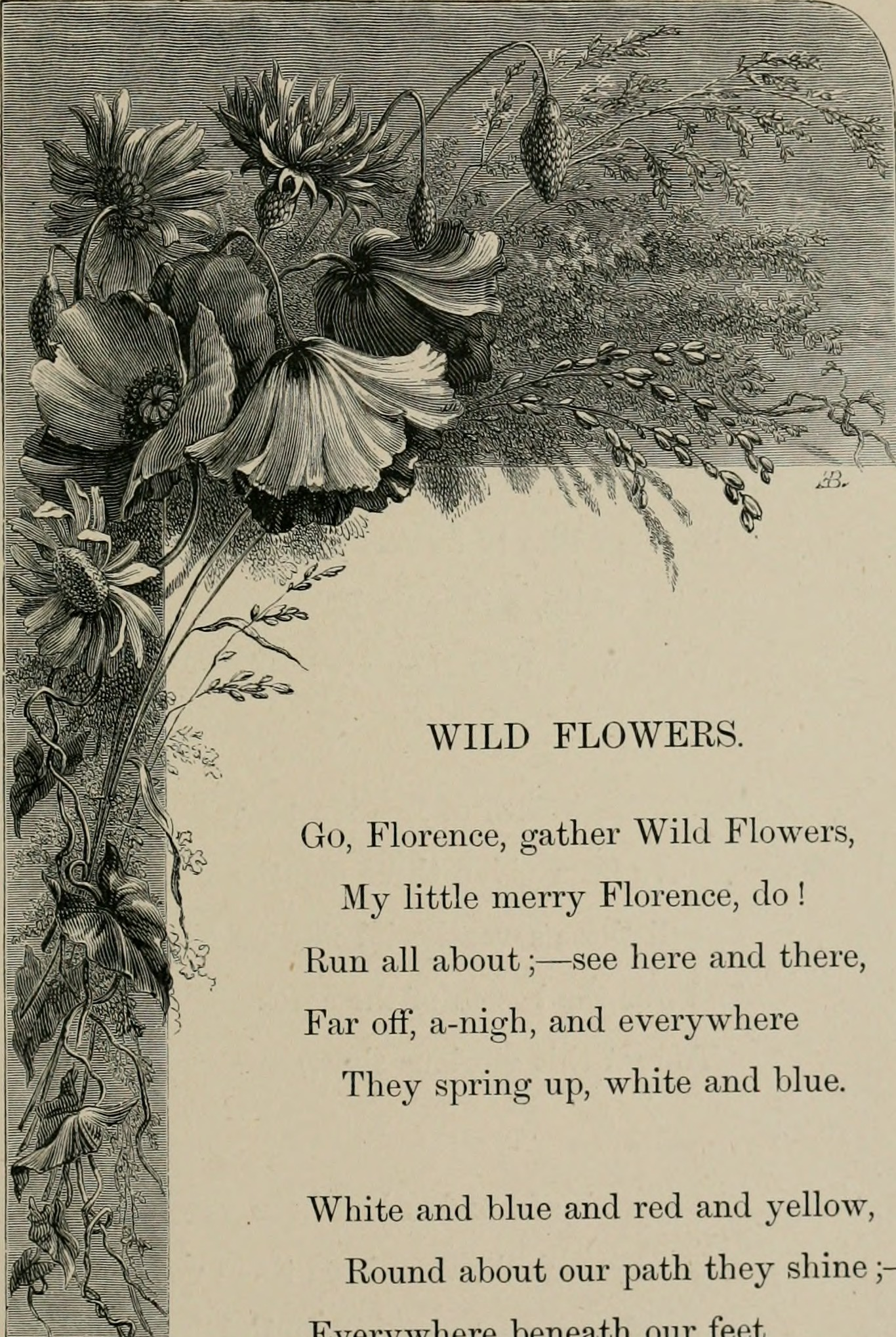 Filebirds And Flowers Or Lays And Lyrics Of Rural Life 1873