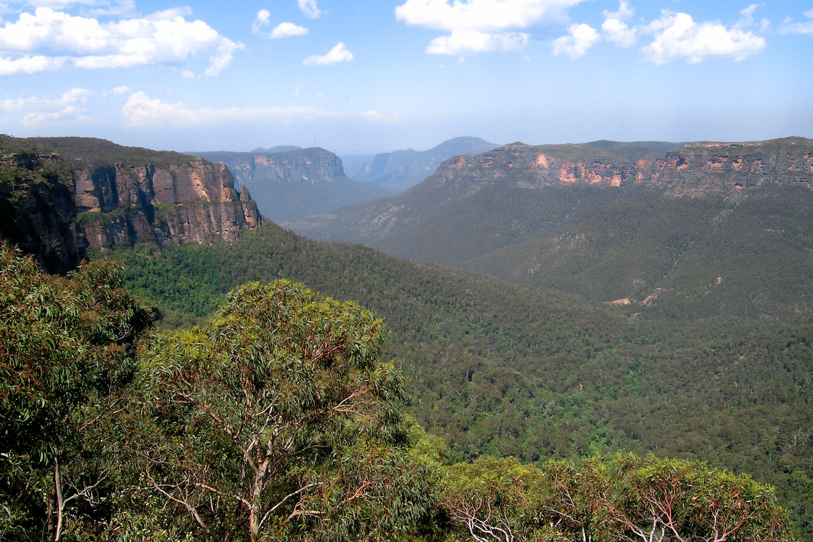 Blue Mountains Australia  city pictures gallery : Plik:Blue Mountains, Australia – Wikipedia, wolna encyklopedia