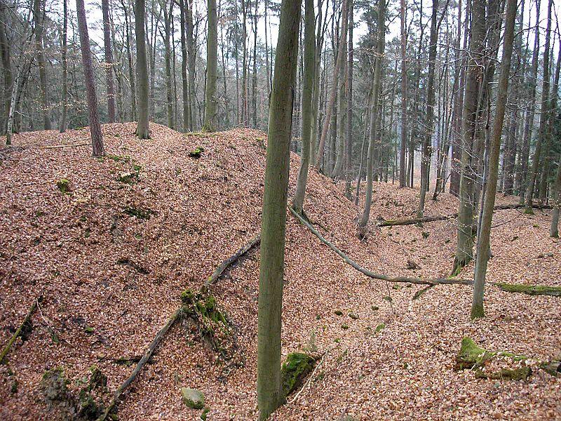 File:Burgstall Gutenfels Sued.jpg