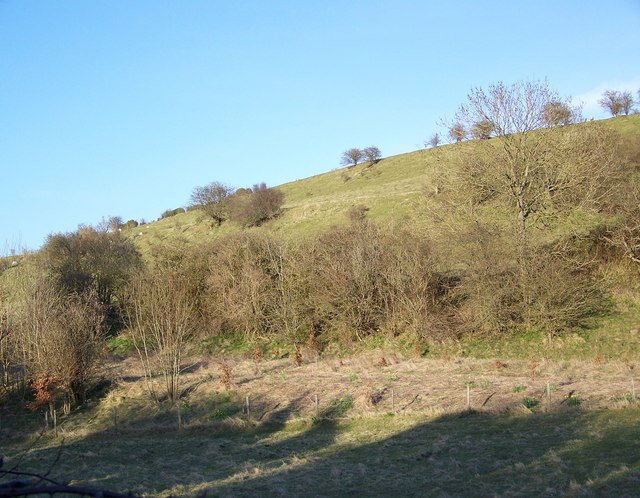 Coombe Bissett Down Nature Reserve - geograph.org.uk - 744702