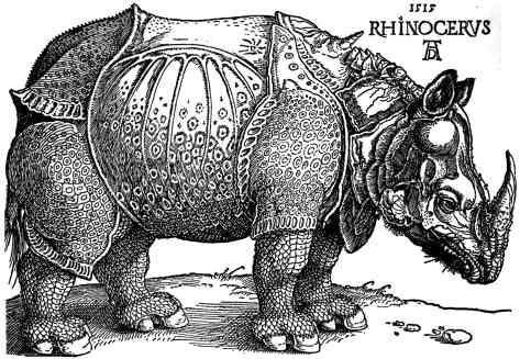 Dürer's Rhinoceros, a fanciful 'armoured' depi...