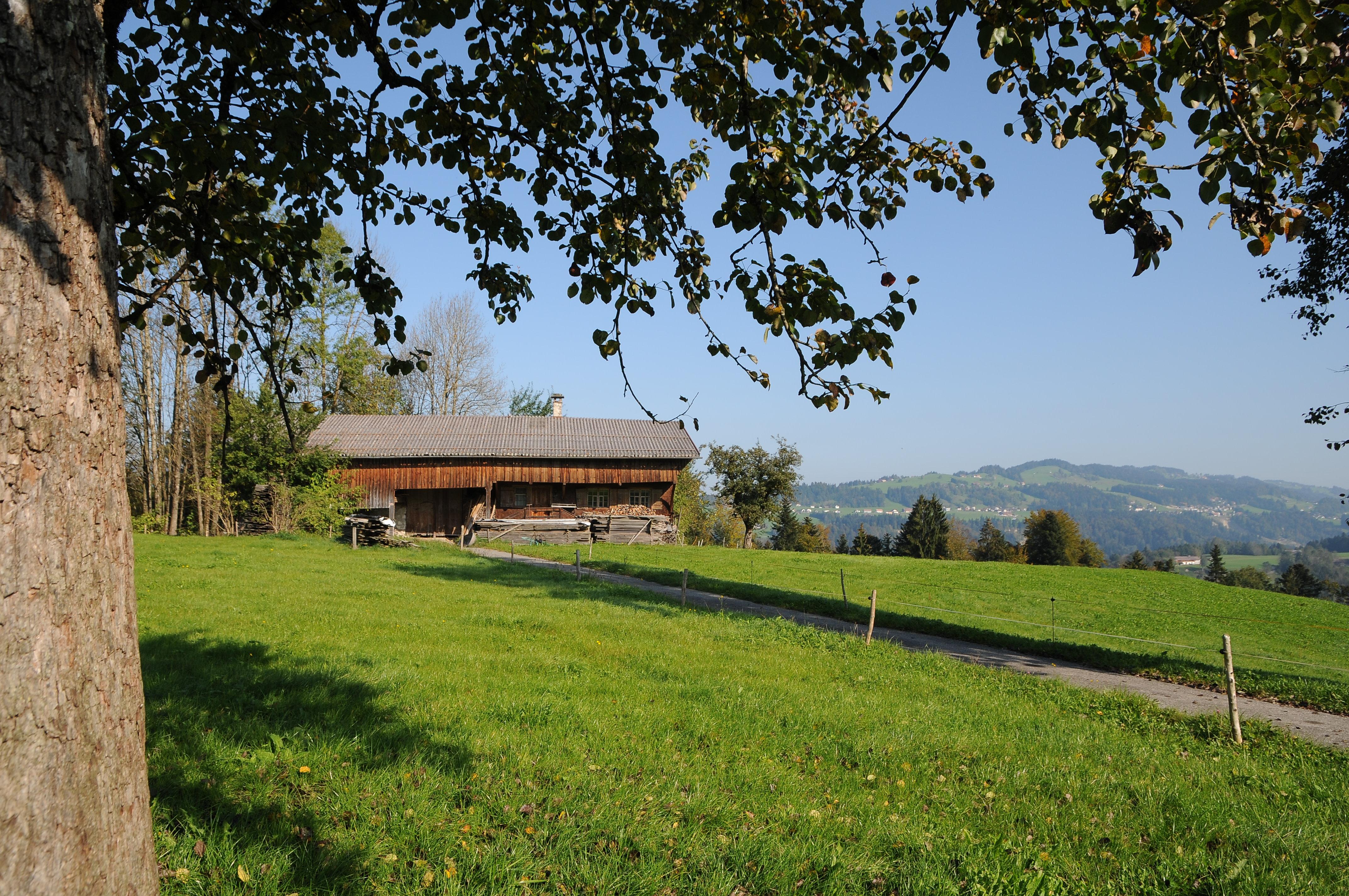 Alberschwende   Vorarlberg: Rk. Matriken (Vbg. Landesarchiv