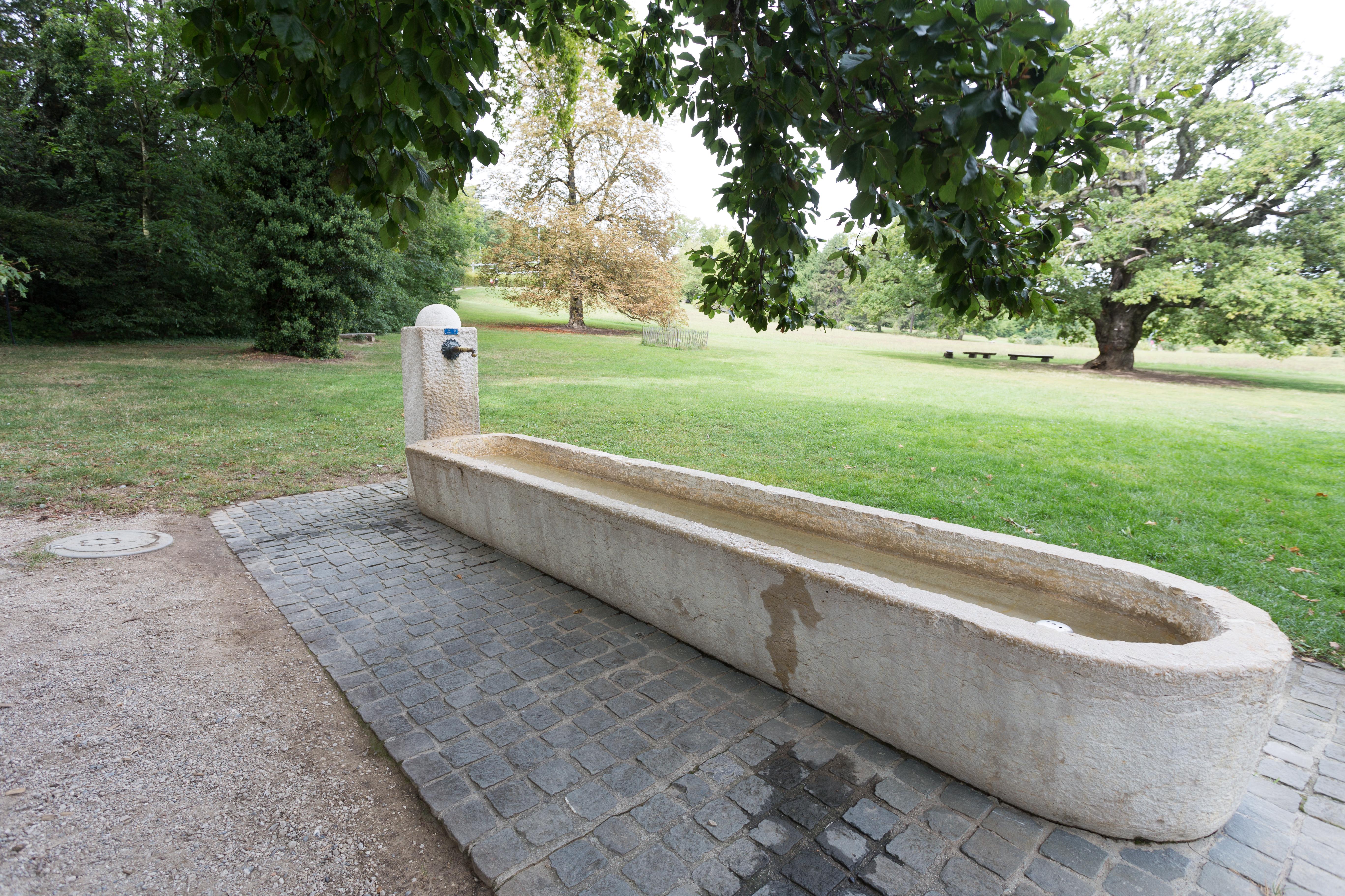 Photo Fontaine De Jardin file:fontaine de l'extension du jardin botanique