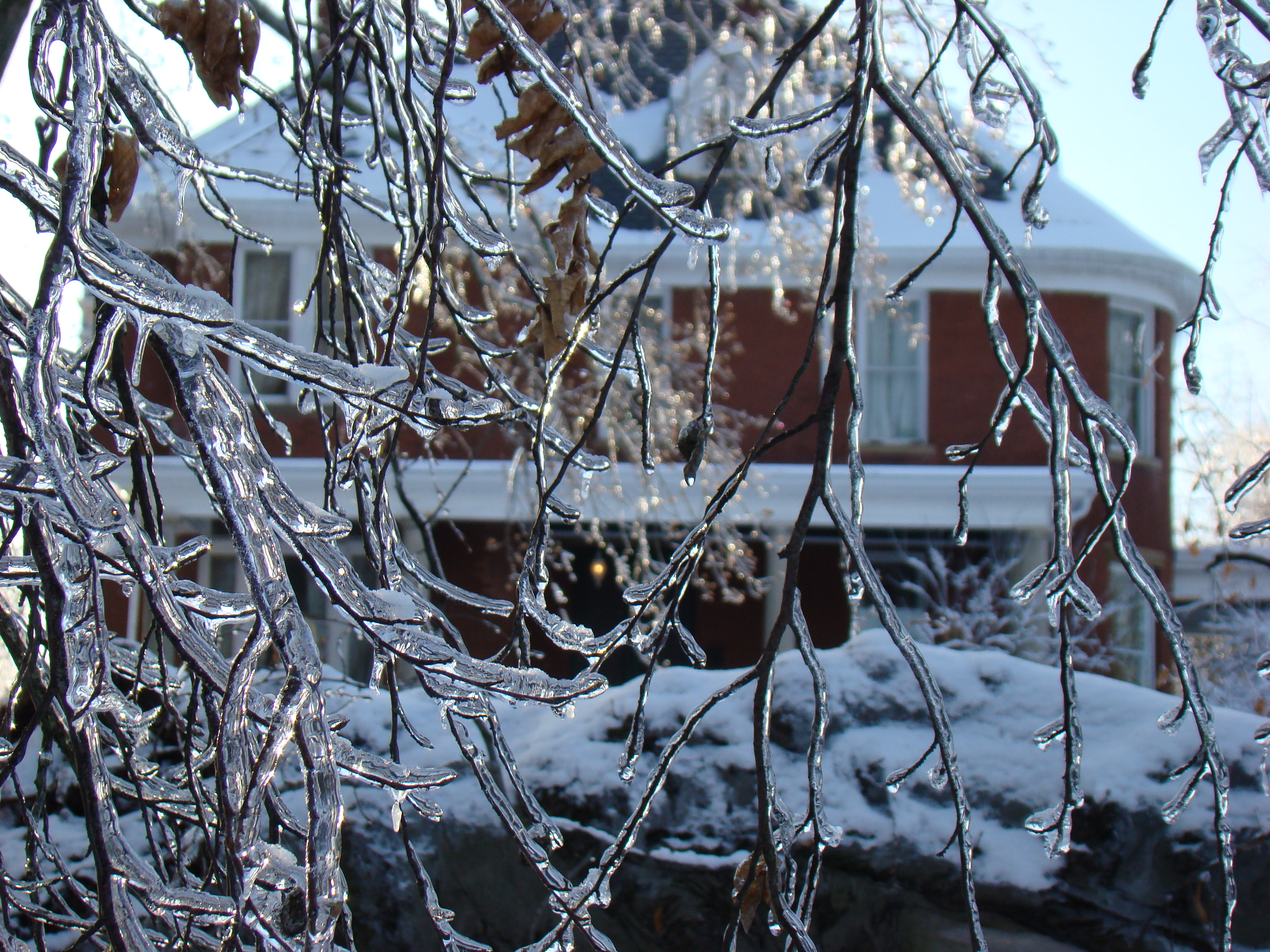 File:Freezing rain, Kentucky 2009 winter storm.JPG - Wikipedia  File:Freezing r...