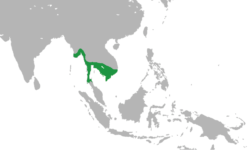 Cambodia Flag And Map
