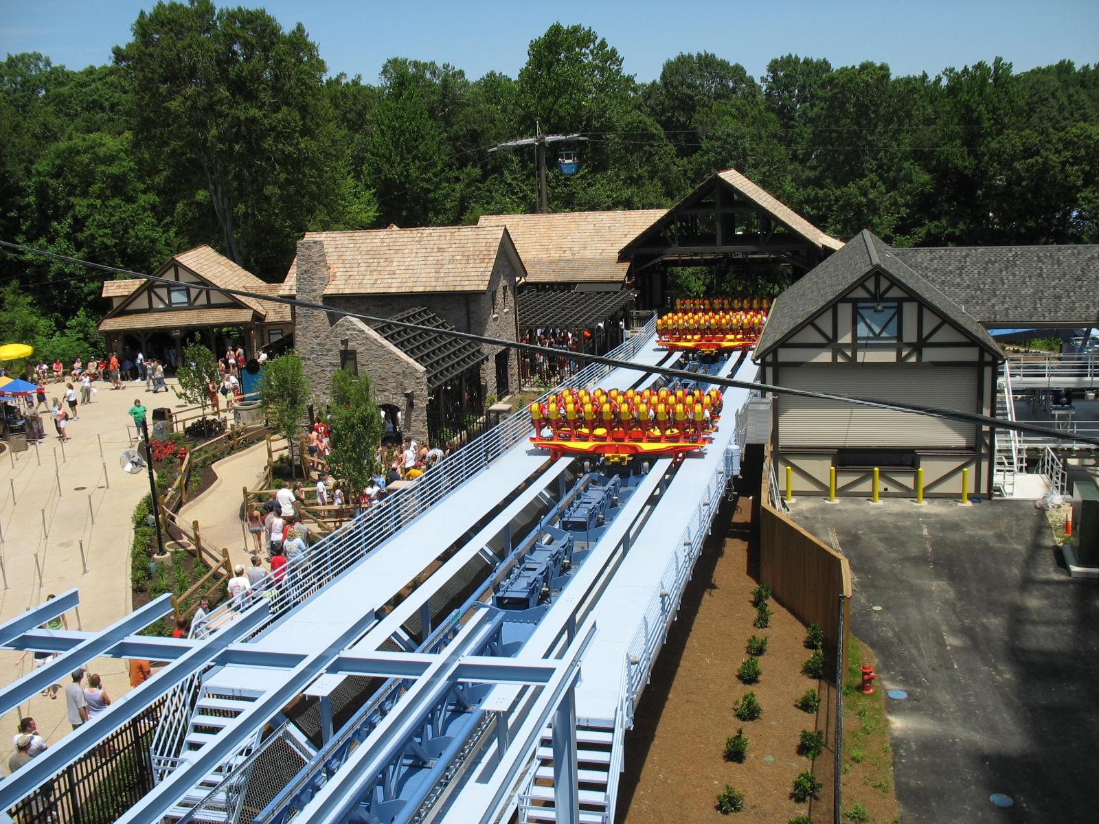 File Griffon Busch Gardens Europe 03 Jpg Wikimedia Commons