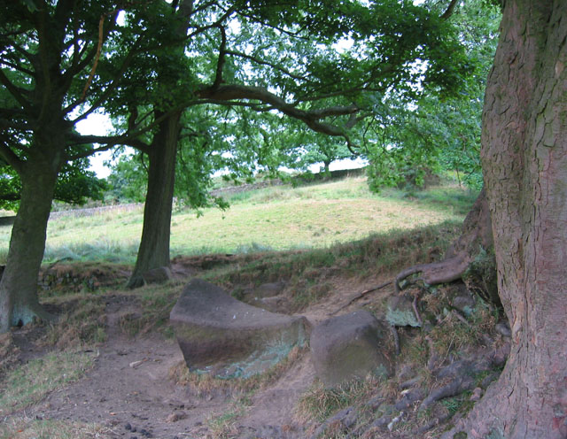Gritstone boulders beneath the Roaches - geograph.org.uk - 210917