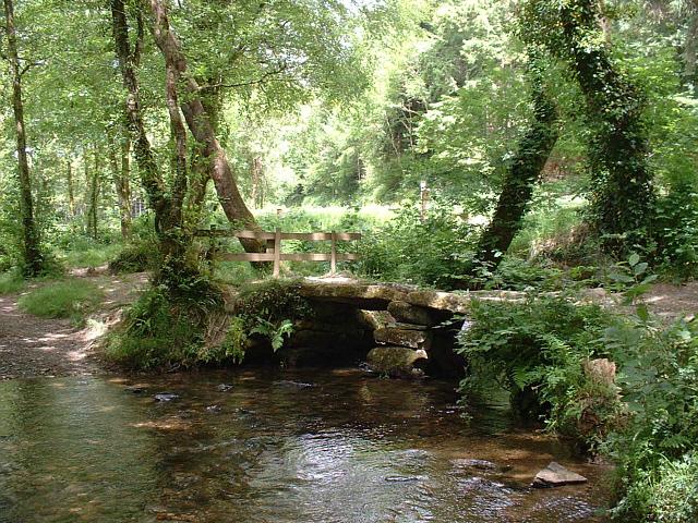 Lady Vale Bridge, Cardinham Woods, Cornwall - geograph.org.uk - 212552