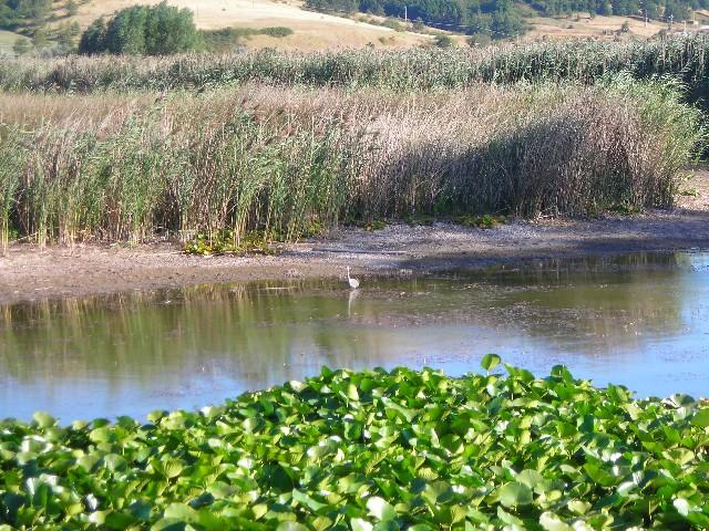 Parco di Colfiorito - Wikipedia