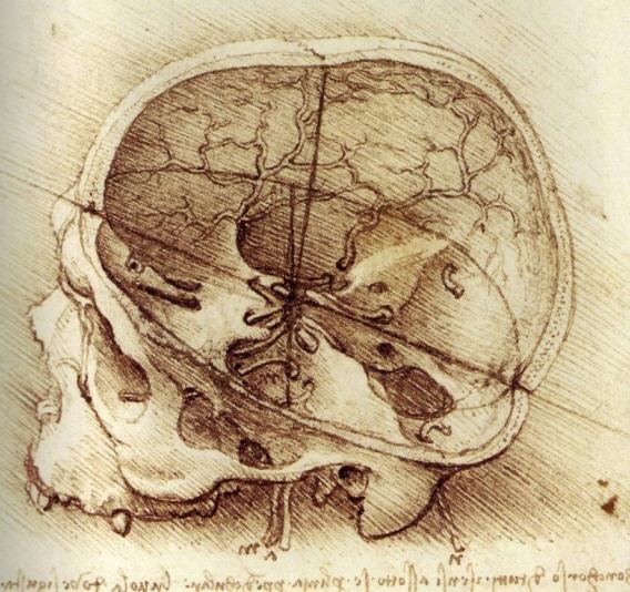 Was Di Vinci S Room Messy