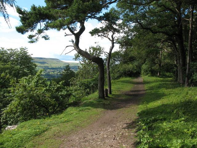 Leyburn Shawl - geograph.org.uk - 891199