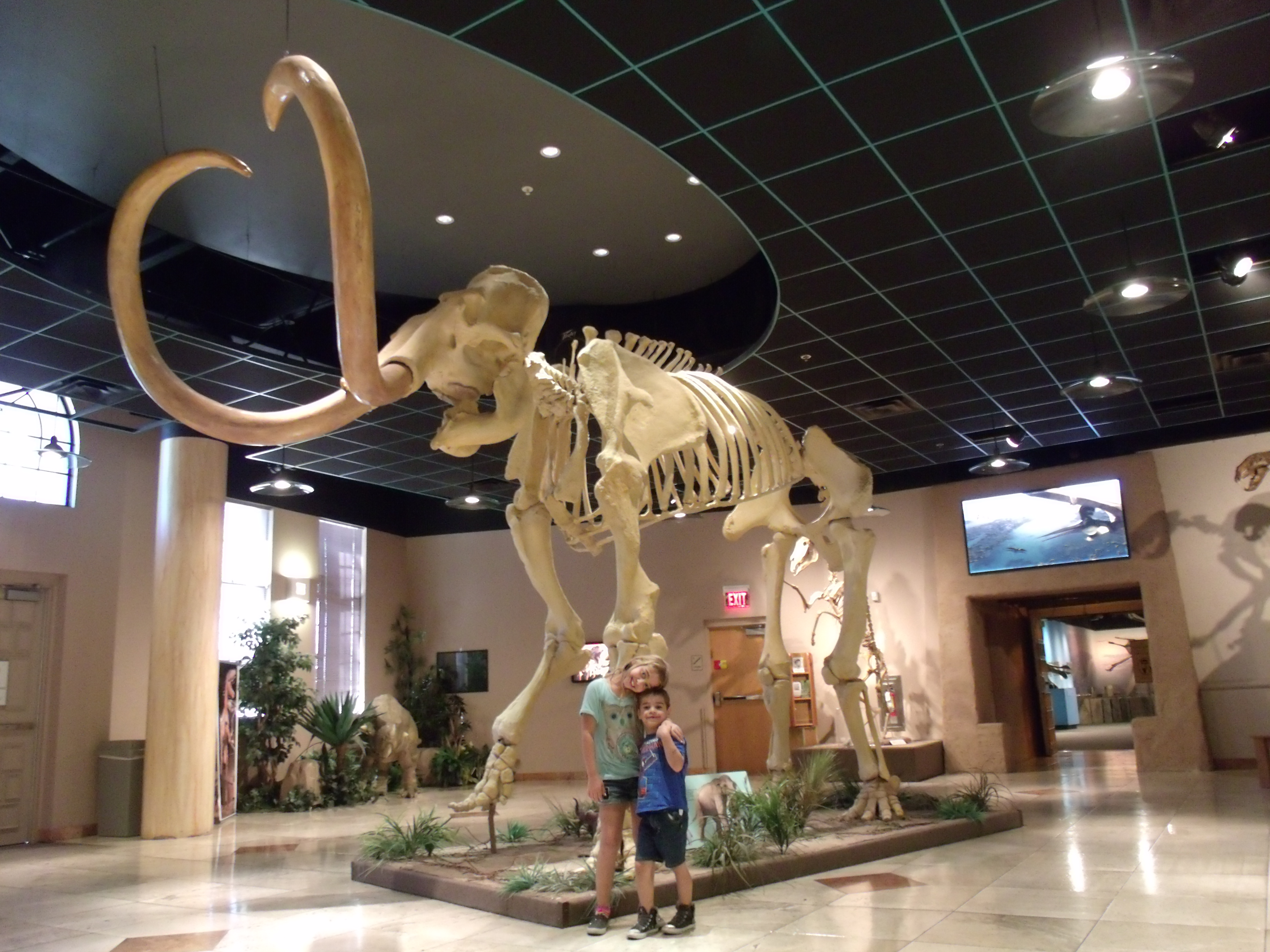 Arizona Museum Of Natural History Mesa
