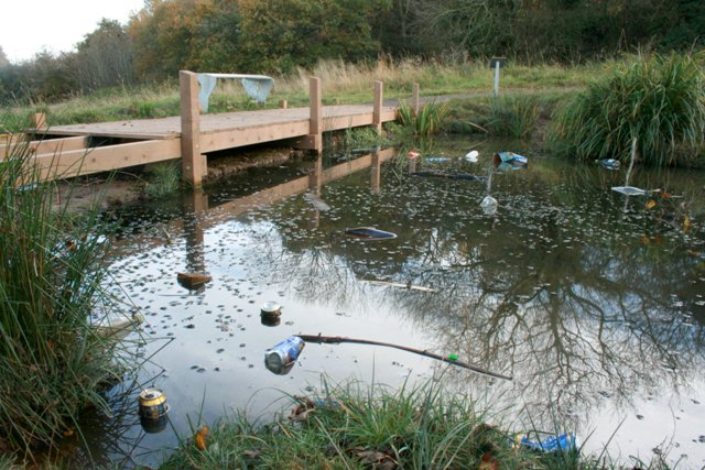 Nature Pond, Flatts Lane Country Park - geograph.org.uk - 603794