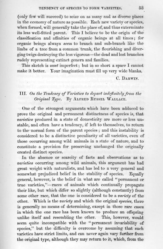 ternate essay El soldà de ternate,  el famós naturalista va escriure el ternate essay, un estudi sobre la selecció natural, mentre era a l'illa, el 1858.