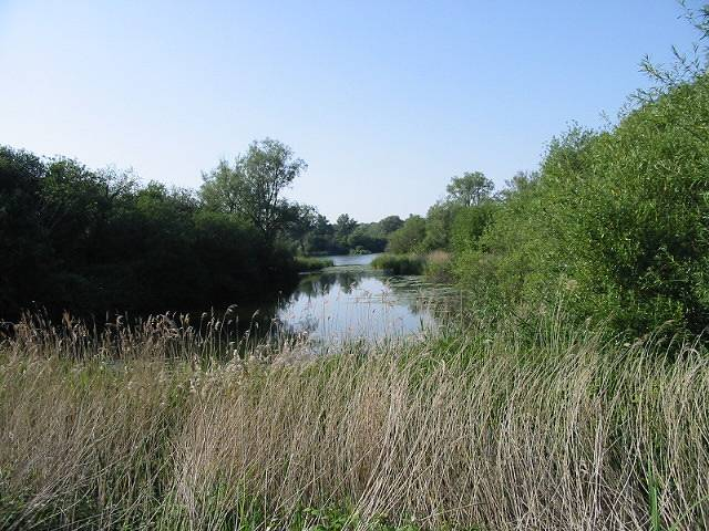 Part of Fordwich lakes from the Stour Valley Walk - geograph.org.uk - 465140