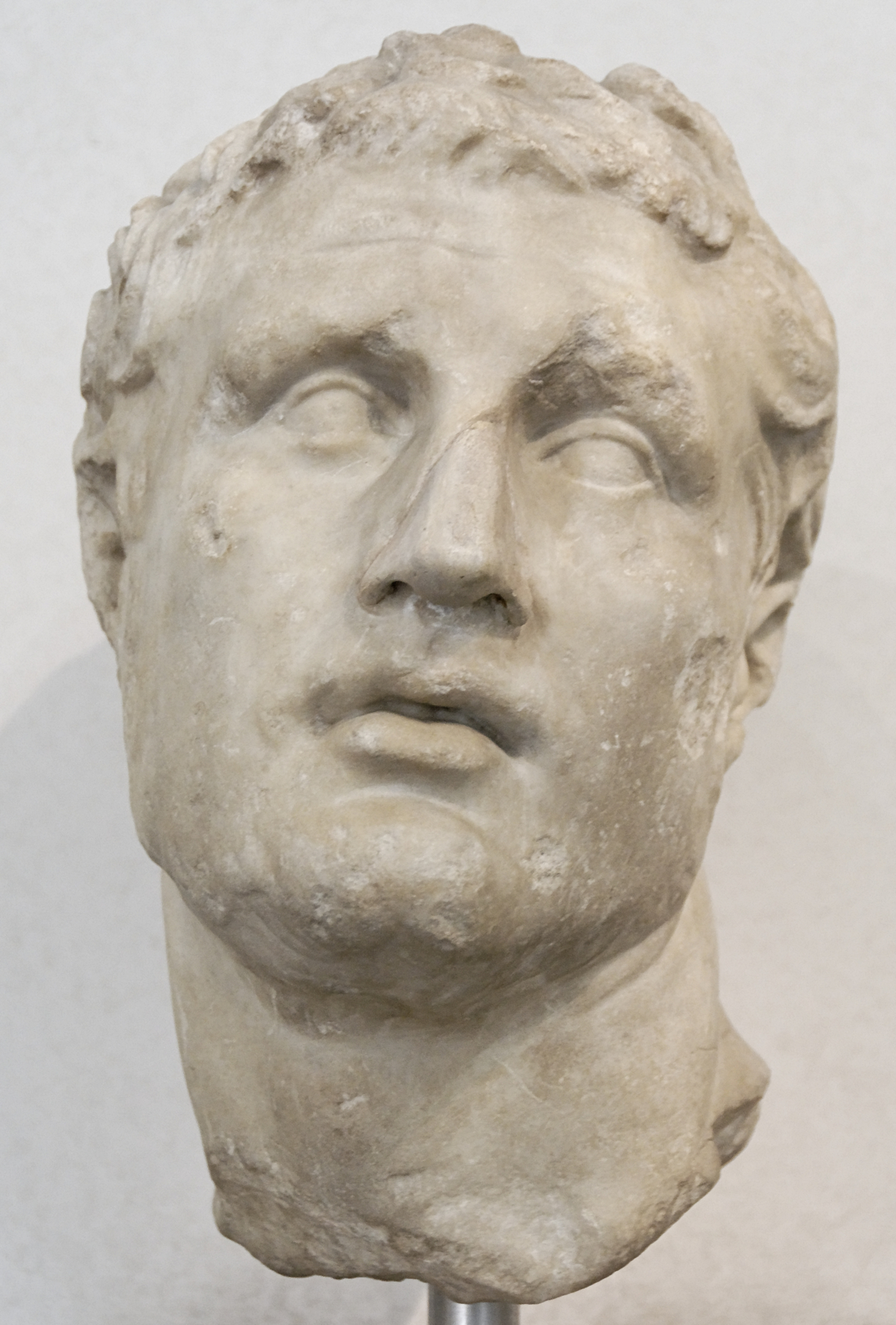 http://upload.wikimedia.org/wikipedia/commons/b/b9/Portrait_Seleucid_Prince_Massimo.jpg