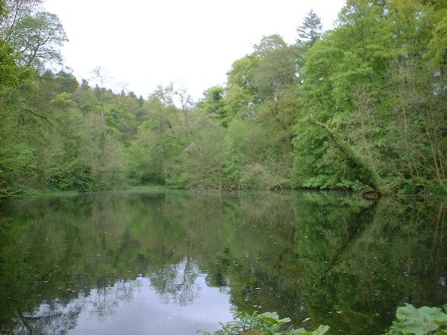 Round Dam, Skipton Woods - geograph.org.uk - 42339
