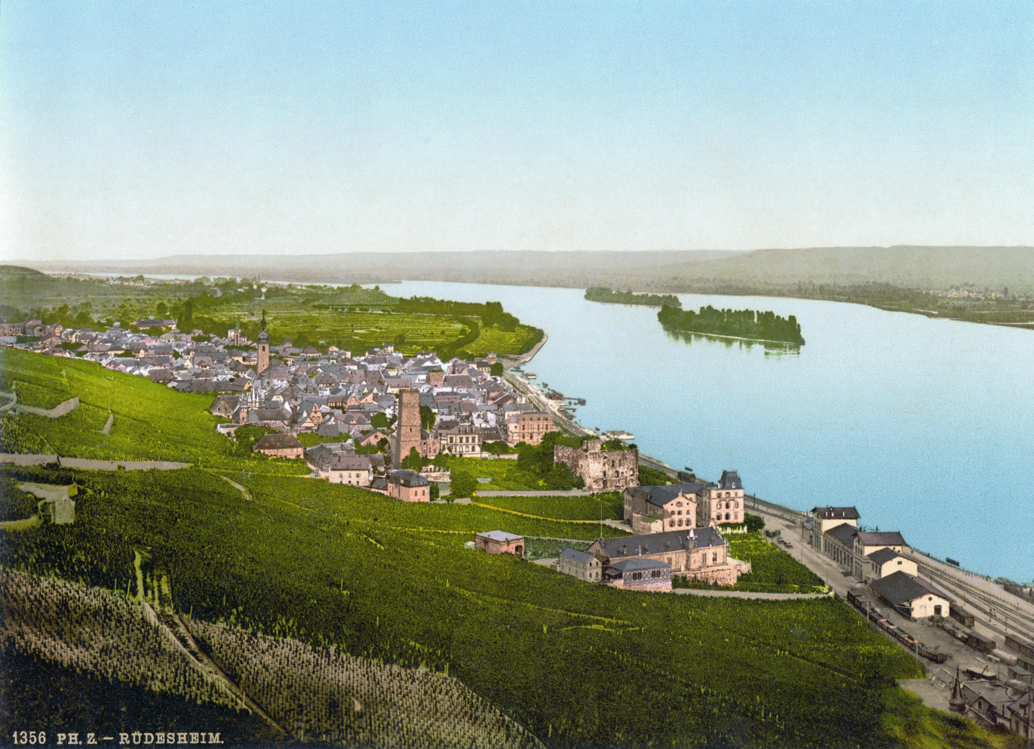 File:Ruedesheim 1900.jpg - Wikimedia Commons