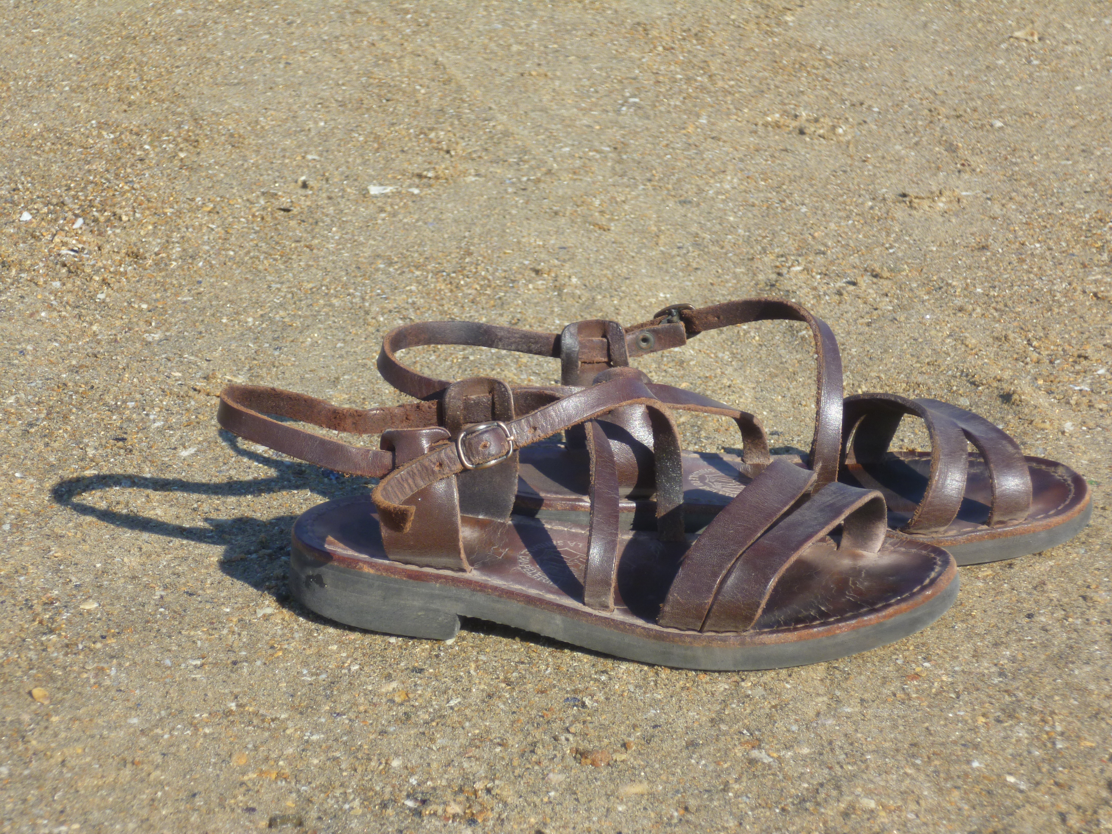 Sandal WikiDaily